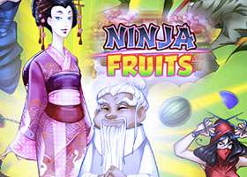 Ninja Fruits Playngo